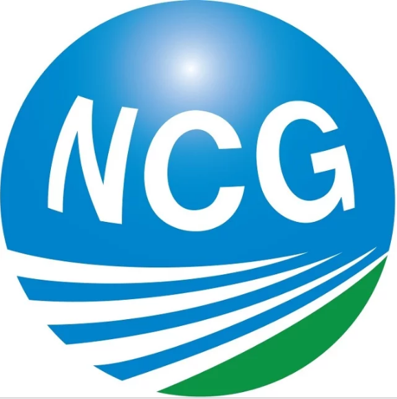 Newman Consulting Group Llc Greeningdetroit Com