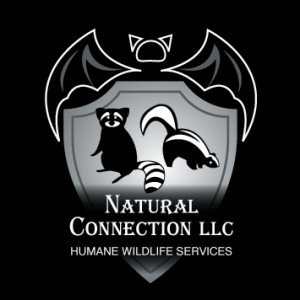 Natural Connection, LLC